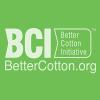 BCI | May 2020